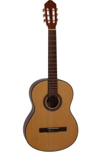 Santana begynder guitar